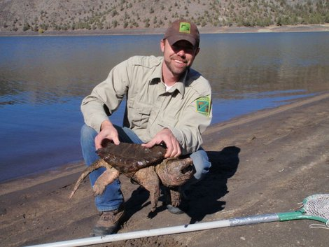 Kingsnake blog blog alligator snapping for Prineville reservoir fishing