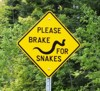 snake crossing sign